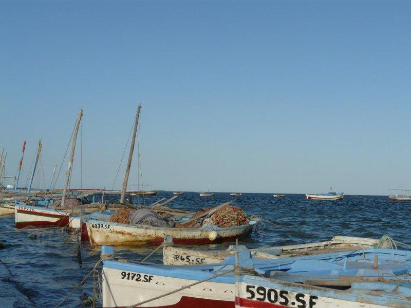 Aide Voyage Scolaire Caf Landes